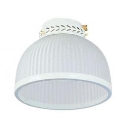 Light Kit Dome for Fantasia ceiling fans